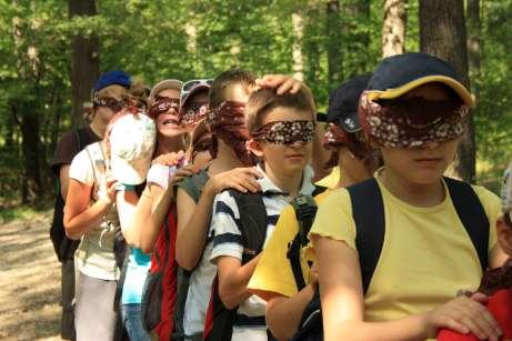 Bline Barfußraupe im Wald