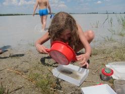 Wir erkunden den Lebensraum Wasser